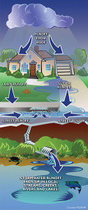 stormwater_goes